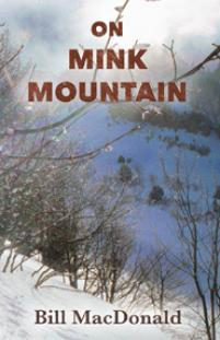 On Mink Mountain